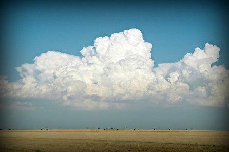 Rural Baca County Skyline
